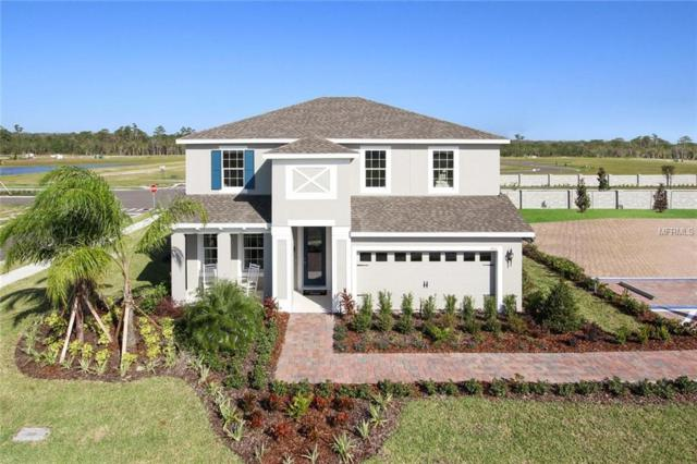 303 Summer Squall Road, Davenport, FL 33837 (MLS #W7804005) :: The Light Team