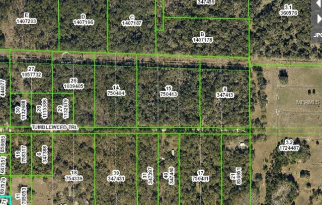 16495 Tumbleweed Trail, Brooksville, FL 34604 (MLS #W7804039) :: The Duncan Duo Team