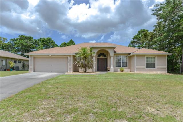 11179 Tuscanny Avenue, Spring Hill, FL 34608 (MLS #W7804050) :: Griffin Group