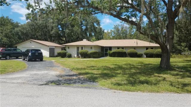 11210 Pine Forest Drive, New Port Richey, FL 34654 (MLS #W7804066) :: Team Pepka