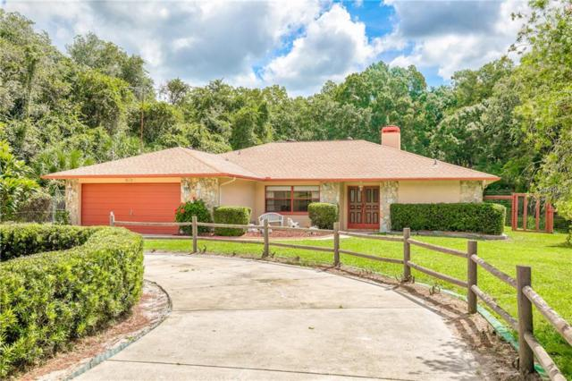 10112 Indian Mound Drive, New Port Richey, FL 34652 (MLS #W7804096) :: Griffin Group