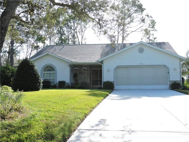 2250 Grandfather Mountain, Spring Hill, FL 34606 (MLS #W7804106) :: The Duncan Duo Team