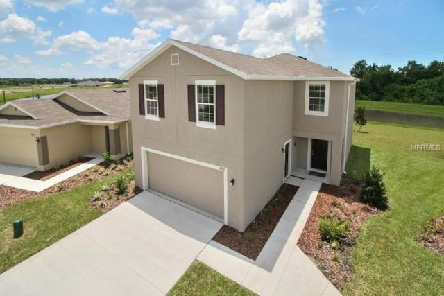 14429 Dunrobin Drive, Wimauma, FL 33598 (MLS #W7804113) :: The Light Team