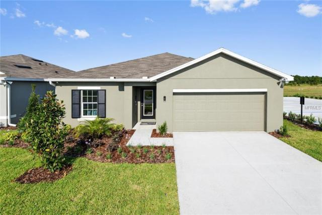 14504 Haddon Mist Drive, Wimauma, FL 33598 (MLS #W7804116) :: The Light Team
