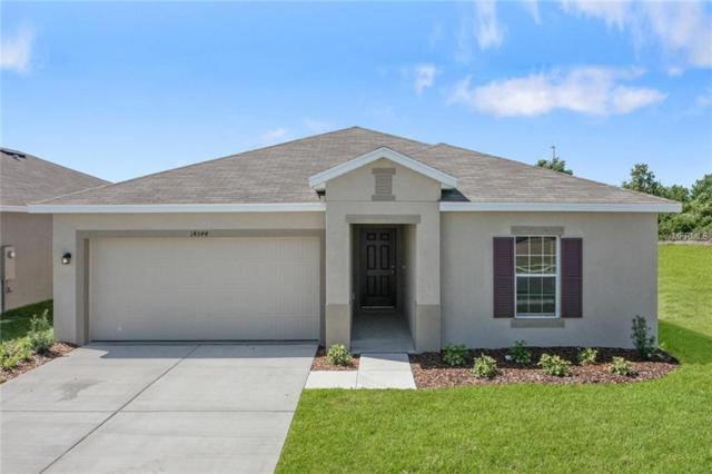 14554 Haddon Mist Drive, Wimauma, FL 33598 (MLS #W7804117) :: The Light Team