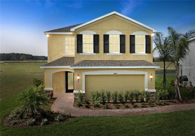 14217 Poke Ridge Drive, Riverview, FL 33579 (MLS #W7804139) :: RE/MAX CHAMPIONS