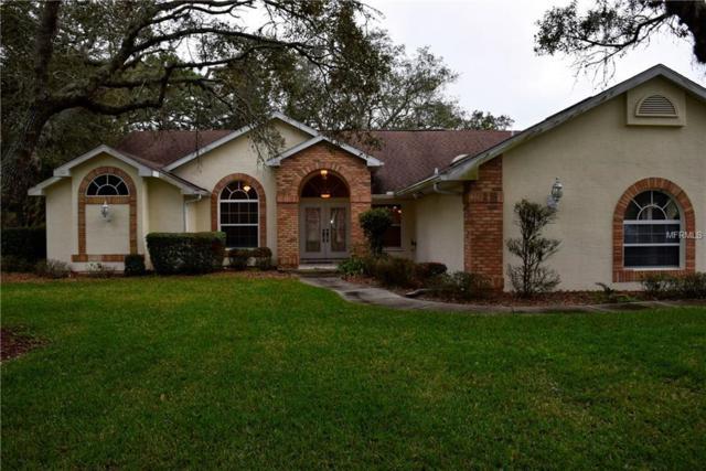 4420 Rachel Boulevard, Spring Hill, FL 34607 (MLS #W7804152) :: The Duncan Duo Team