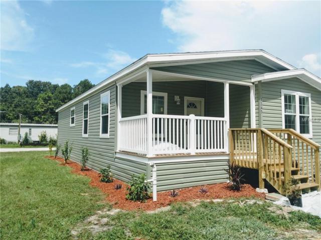 7345 Gettysburg Drive, Weeki Wachee, FL 34607 (MLS #W7804160) :: Mark and Joni Coulter | Better Homes and Gardens