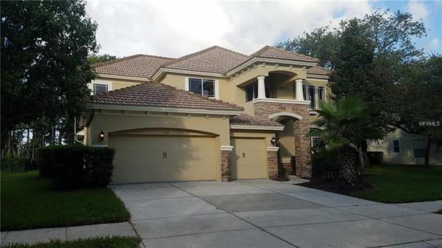 9129 Creedmoor Lane, New Port Richey, FL 34654 (MLS #W7804170) :: Delgado Home Team at Keller Williams