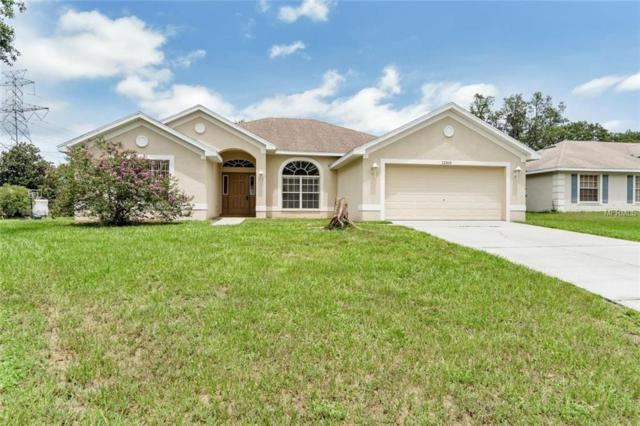 12163 Bluefield Street, Spring Hill, FL 34609 (MLS #W7804185) :: Griffin Group