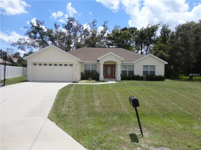 3291 Guava Lane, Spring Hill, FL 34609 (MLS #W7804186) :: Griffin Group