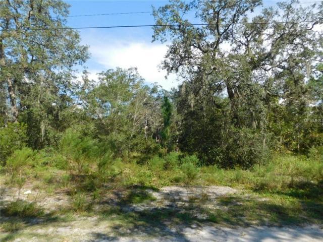 0 Field Street, New Port Richey, FL 34654 (MLS #W7804285) :: G World Properties