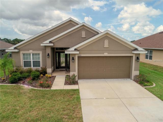 13223 Niti Drive, Hudson, FL 34669 (MLS #W7804327) :: The Duncan Duo Team