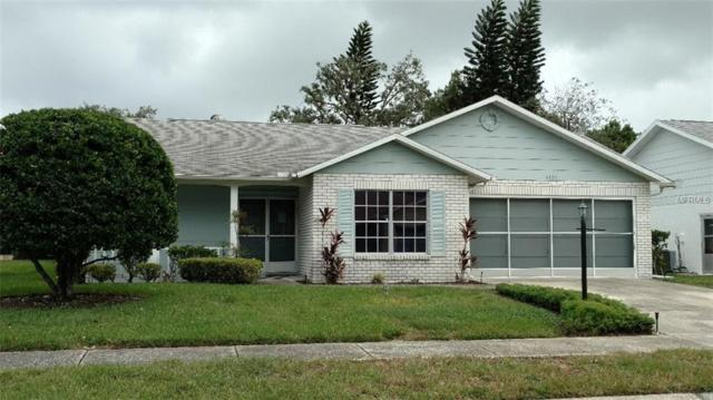 4720 Cavendish Drive, New Port Richey, FL 34655 (MLS #W7804437) :: The Duncan Duo Team
