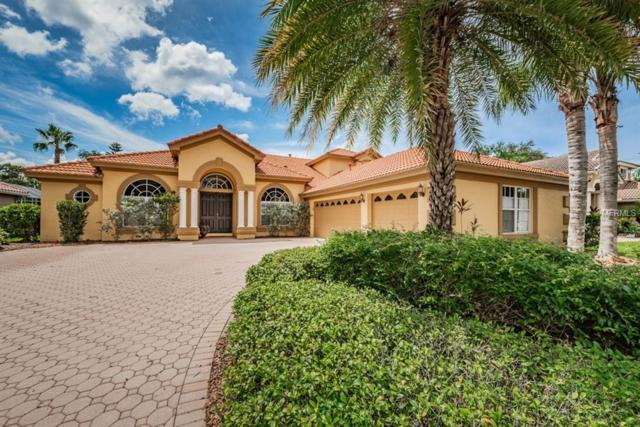 10530 Garda Drive, Trinity, FL 34655 (MLS #W7804497) :: The Duncan Duo Team