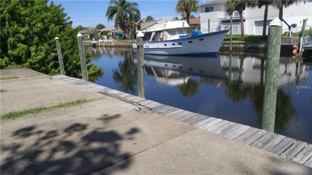 Mako Drive, Hudson, FL 34667 (MLS #W7804513) :: Team Pepka