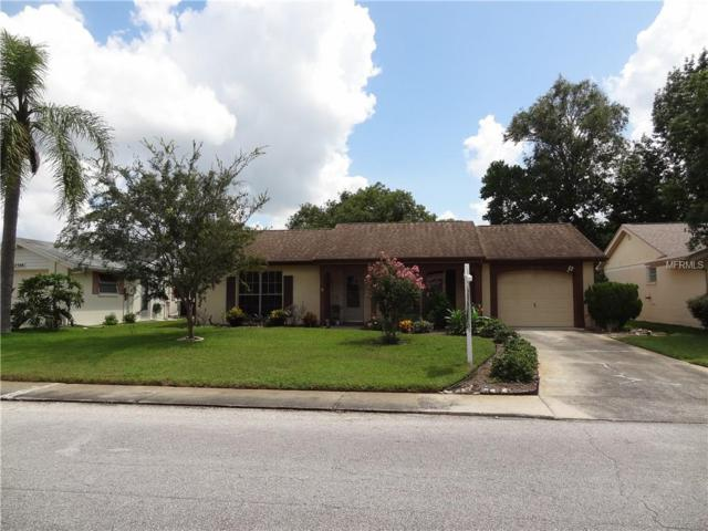 12306 Hounds Tooth Lane, Hudson, FL 34667 (MLS #W7804678) :: The Duncan Duo Team