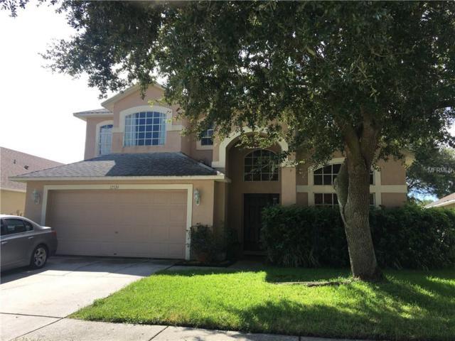 12520 Sparkleberry Road, Tampa, FL 33626 (MLS #W7804798) :: The Light Team