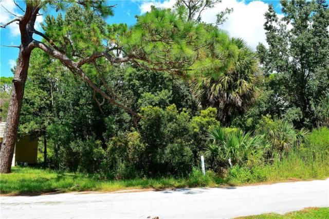 0293 Cutlass Drive, Hudson, FL 34667 (MLS #W7804833) :: Team Pepka