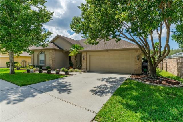 1223 Manderlee Place, Trinity, FL 34655 (MLS #W7804966) :: Jeff Borham & Associates at Keller Williams Realty