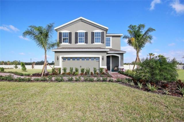4354 Silver Creek Street, Kissimmee, FL 34744 (MLS #W7805001) :: G World Properties