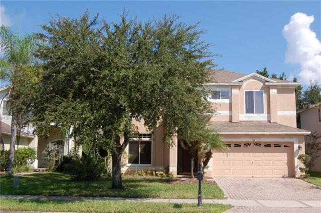 396 Ventura Drive, Oldsmar, FL 34677 (MLS #W7805078) :: O'Connor Homes