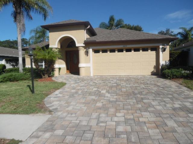 11631 Wayside Willow Court, Hudson, FL 34667 (MLS #W7805081) :: Jeff Borham & Associates at Keller Williams Realty