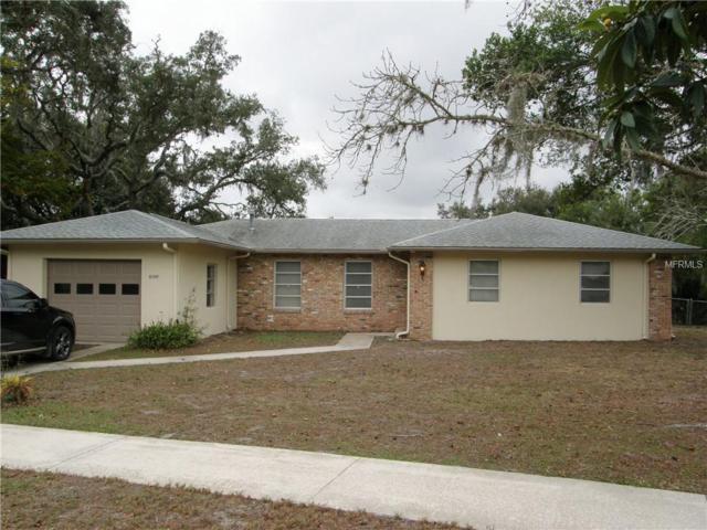 6348 Sunbird Lane, Spring Hill, FL 34606 (MLS #W7805084) :: G World Properties