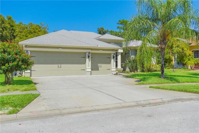 431 Denise Street, Tarpon Springs, FL 34689 (MLS #W7805090) :: Lock and Key Team