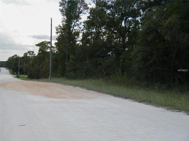 Dusky Warbler Road, Weeki Wachee, FL 34614 (MLS #W7805123) :: The Duncan Duo Team
