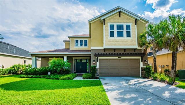 8763 Bella Vita Circle, Land O Lakes, FL 34637 (MLS #W7805127) :: Delgado Home Team at Keller Williams