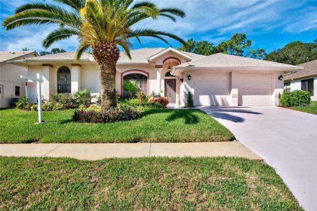14337 Pimberton Drive, Hudson, FL 34667 (MLS #W7805152) :: Team Virgadamo