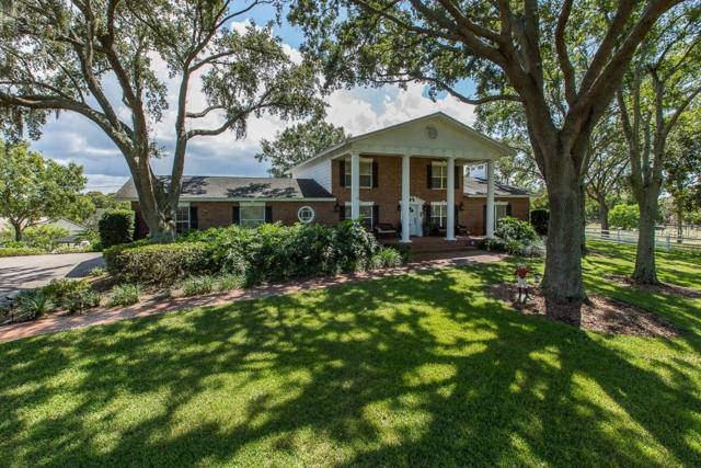 101 Old East Lake Road, Tarpon Springs, FL 34688 (MLS #W7805160) :: Gate Arty & the Group - Keller Williams Realty