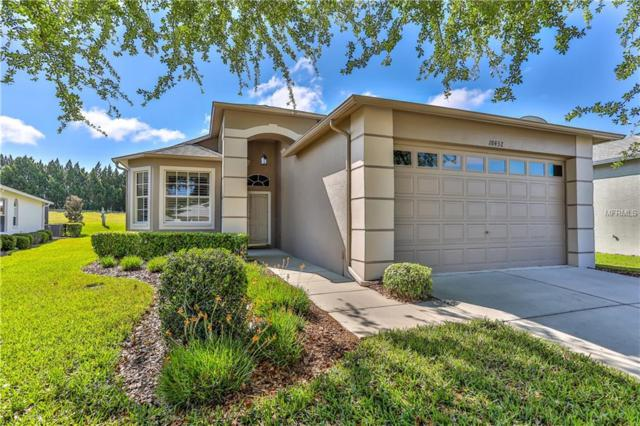 18432 Fairway Green Drive, Hudson, FL 34667 (MLS #W7805169) :: Jeff Borham & Associates at Keller Williams Realty