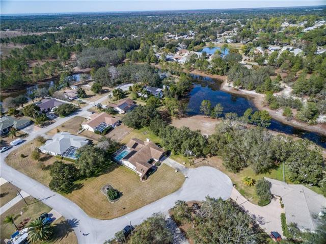 00 Reef Court, Spring Hill, FL 34606 (MLS #W7805190) :: The Duncan Duo Team
