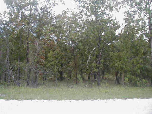 Flemington Road, Weeki Wachee, FL 34614 (MLS #W7805200) :: KELLER WILLIAMS CLASSIC VI