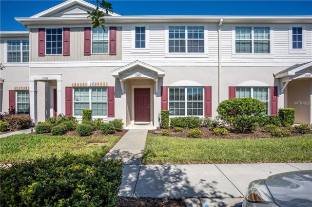 15831 Stable Run Drive, Spring Hill, FL 34610 (MLS #W7805204) :: GO Realty