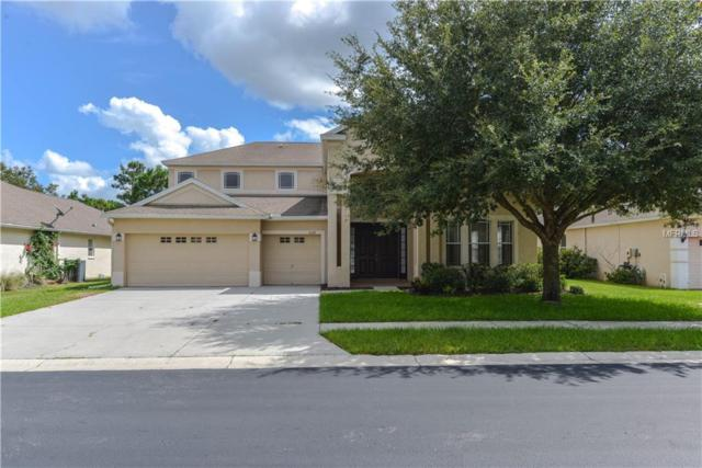 4728 Copper Hill Drive, Spring Hill, FL 34609 (MLS #W7805291) :: Team Suzy Kolaz