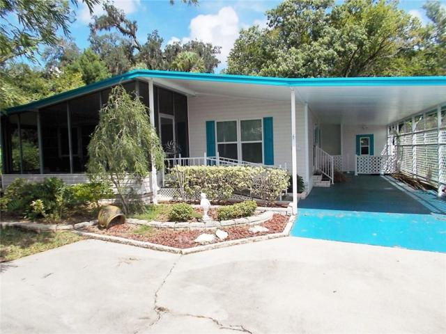 6503 Clemens Boulevard, Port Richey, FL 34668 (MLS #W7805341) :: The Duncan Duo Team