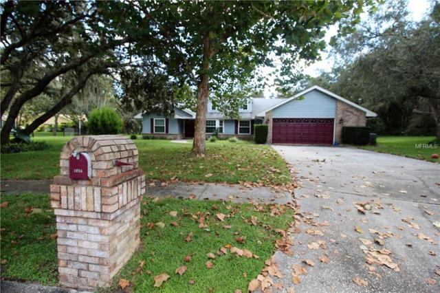 13754 Powder Keg Court, Hudson, FL 34667 (MLS #W7805469) :: Mark and Joni Coulter   Better Homes and Gardens