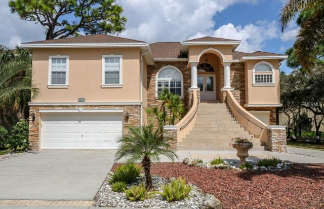 1212 Castle Terrace, Tarpon Springs, FL 34689 (MLS #W7805557) :: The Duncan Duo Team