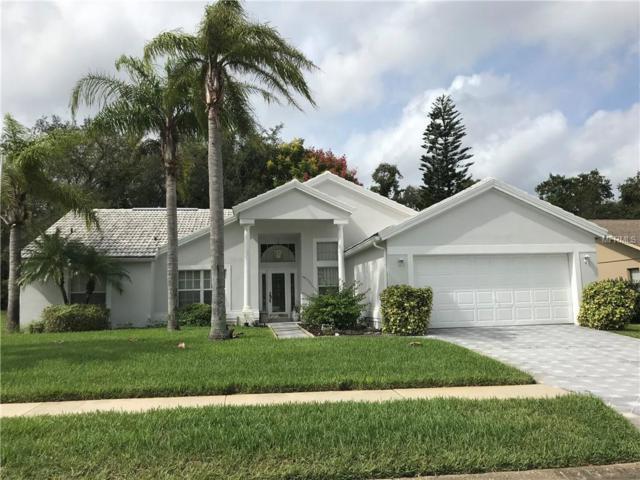 13541 Woodside Drive, Hudson, FL 34667 (MLS #W7805684) :: RE/MAX CHAMPIONS