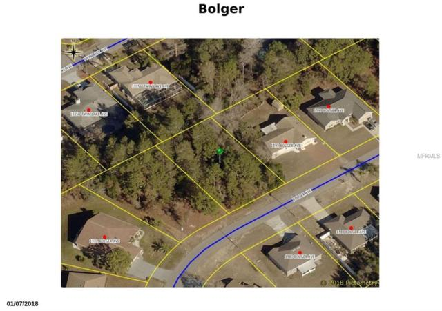 1383 Bolger Avenue, Spring Hill, FL 34609 (MLS #W7805688) :: The Duncan Duo Team