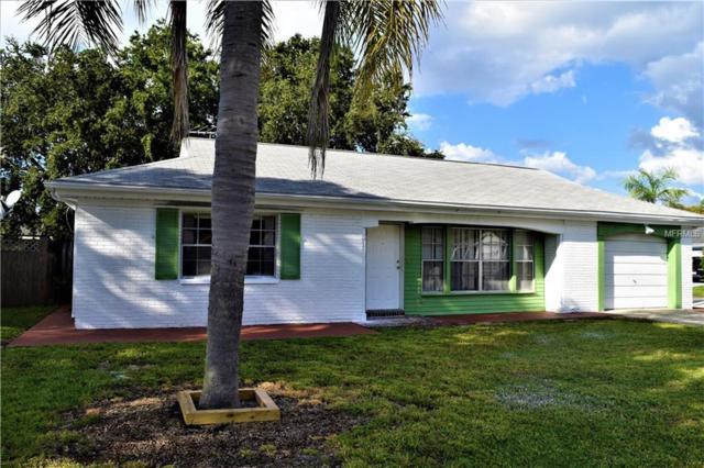 4039 Cashmere Drive, New Port Richey, FL 34652 (MLS #W7805716) :: The Light Team