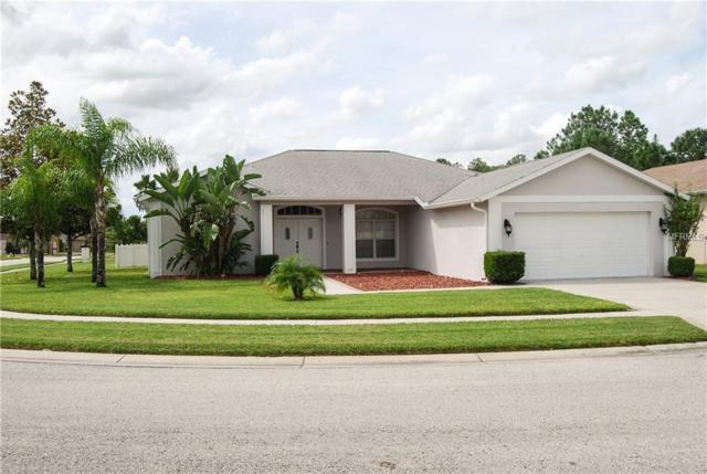 4203 Anaconda Drive, New Port Richey, FL 34655 (MLS #W7805774) :: The Duncan Duo Team
