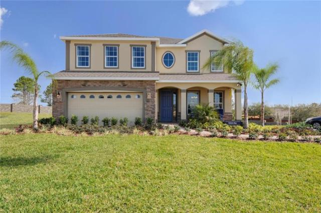 344 Summer Squall Drive, Davenport, FL 33837 (MLS #W7805778) :: Remax Alliance