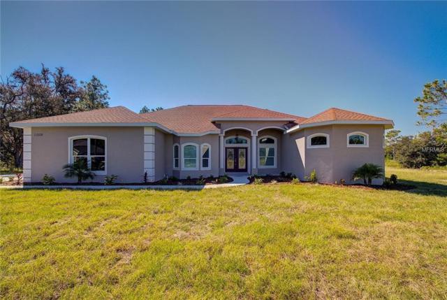11208 Mirage Avenue, Weeki Wachee, FL 34614 (MLS #W7805818) :: The Lockhart Team