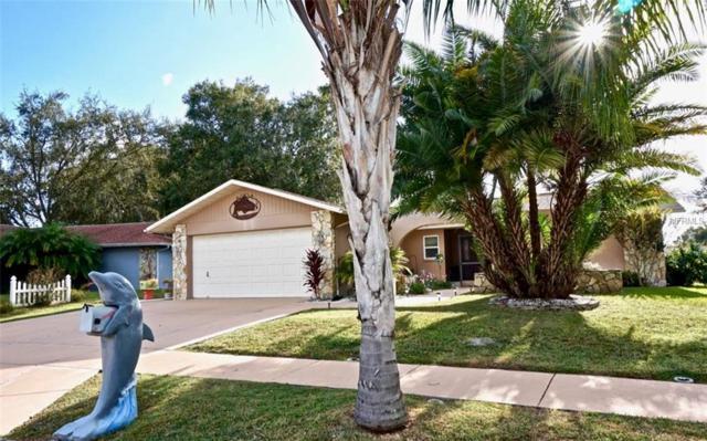 4537 Whitetail Lane, New Port Richey, FL 34653 (MLS #W7805888) :: RE/MAX CHAMPIONS