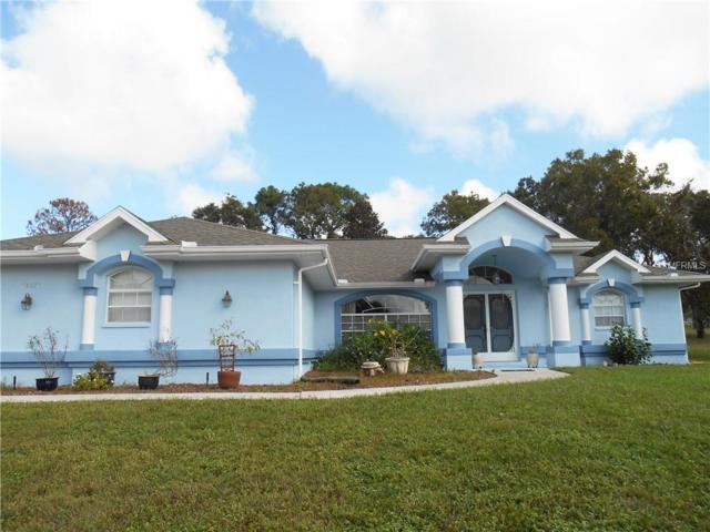 13377 Elise Lane, Spring Hill, FL 34609 (MLS #W7805916) :: Mark and Joni Coulter | Better Homes and Gardens