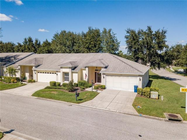 11023 Torrey Pines Court, Hudson, FL 34667 (MLS #W7805931) :: McConnell and Associates